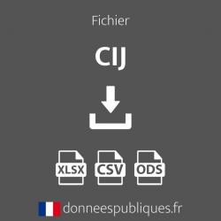 Fichier des CIJ